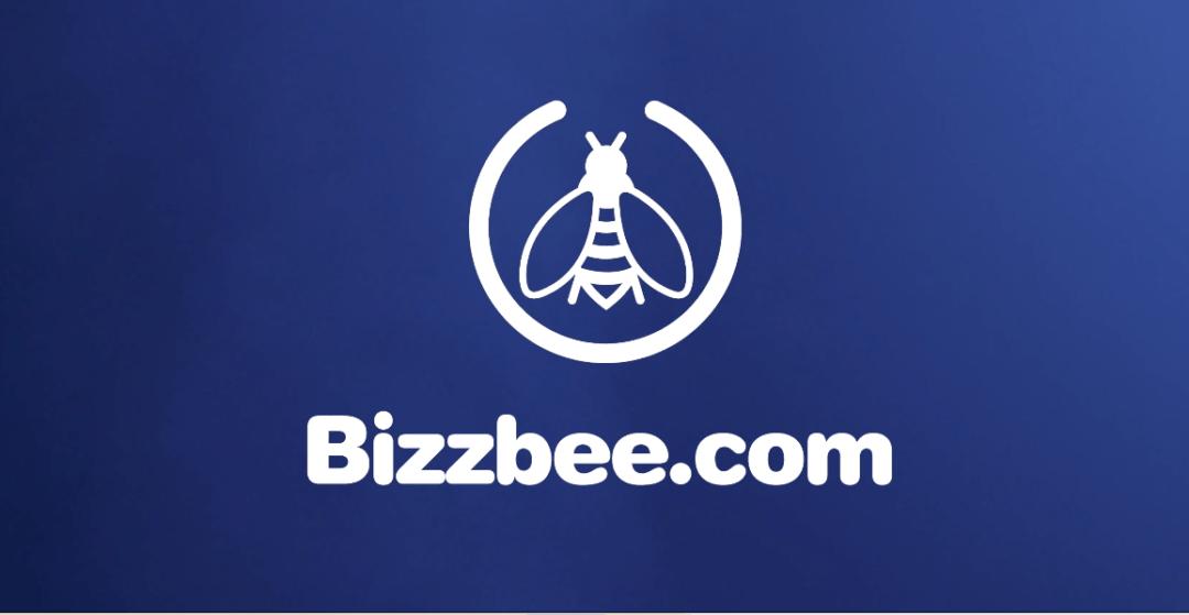 Bizzbee – Noël Cosmic